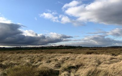 Sunday Stroll – Wells to Stiffkey and Back